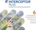 Interceptor_370.jpg