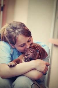 puppy-742616_960_720