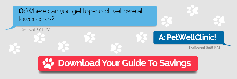 Q- Where - Can - You - Get - Top-Notch - Vet - Care - At - Lower - Costs- - V1.1