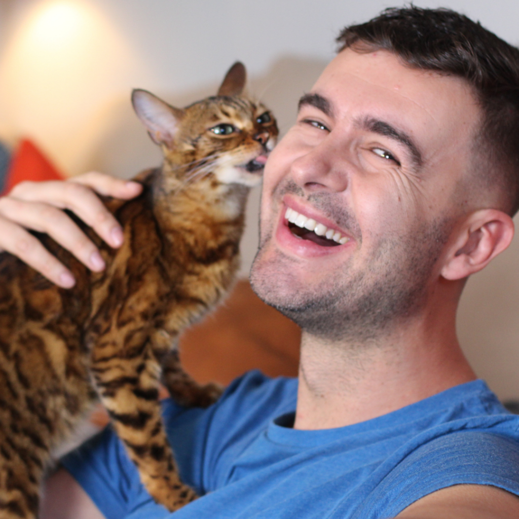 Being proactive about your cat's health can keep both you and your cat happier!