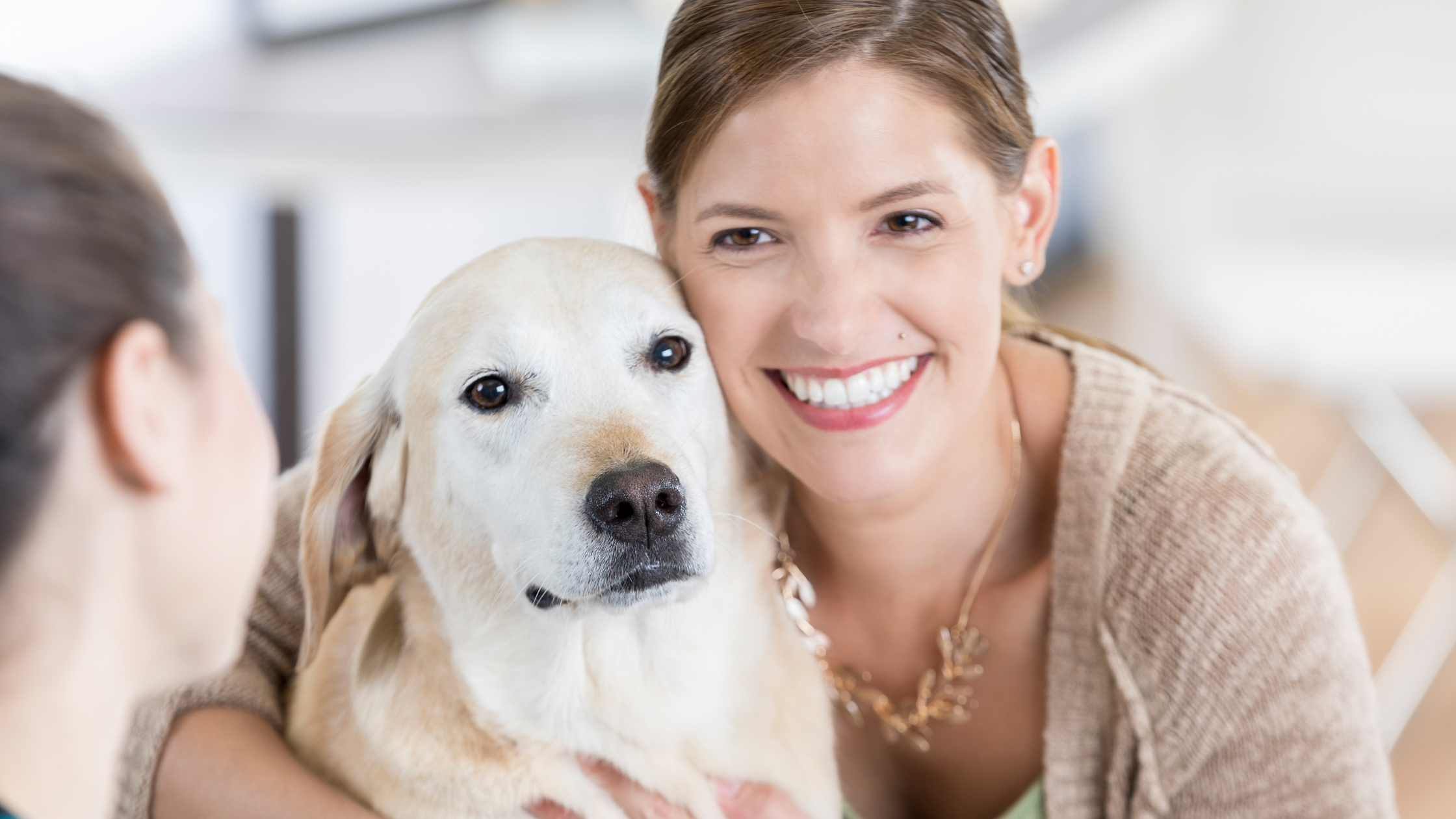 Protecting your pet from heartworm disease